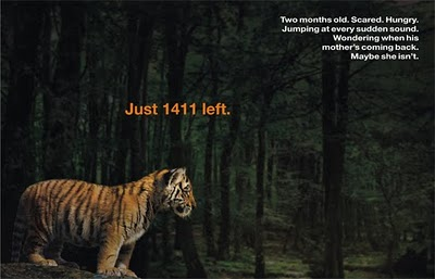 Save Tigers