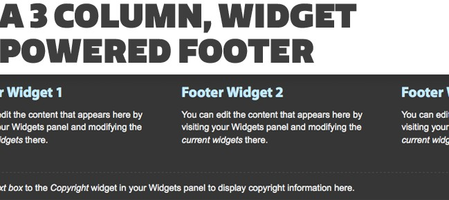 Widgetized Footer