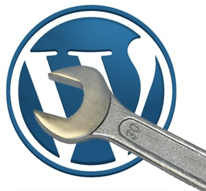 WordPress 3.0.1