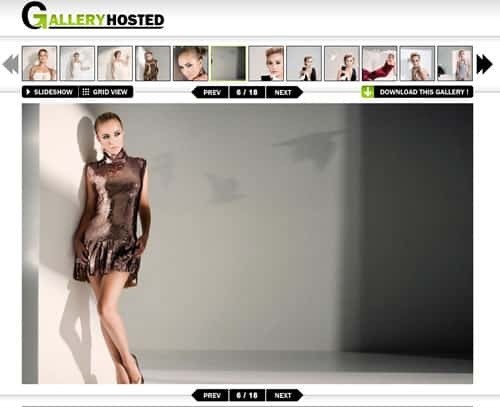 free image hosting websites. With tonnes of Image hosting websites out there, websites like GalleryHosted