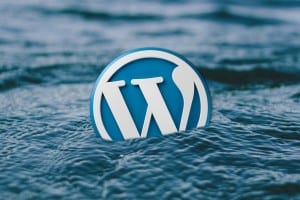 How I Lost All My Wordpress Data And How I Got It Back