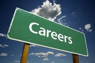 Blogging Careers