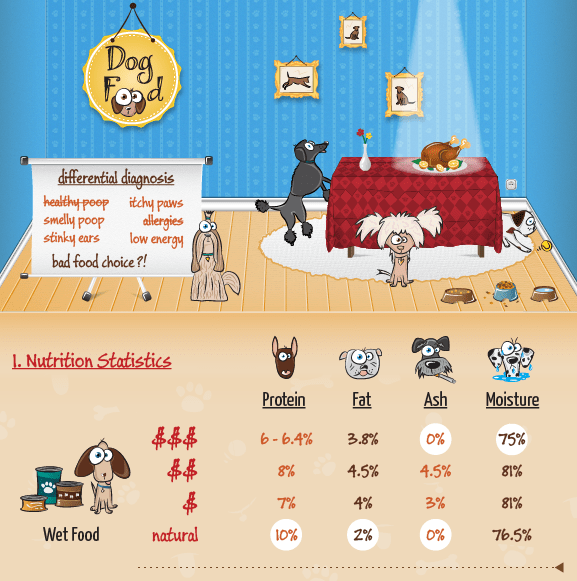 Dog Food Infographic Screenshot
