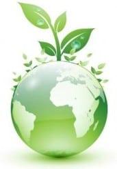 Non-profit Green