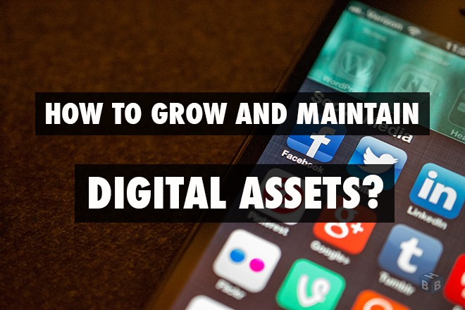 Grow and Maintain Digital Assets