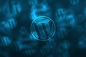 WordPress Hosting Minimum Requirements