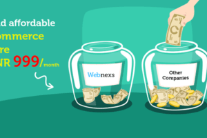 Webnexs Review