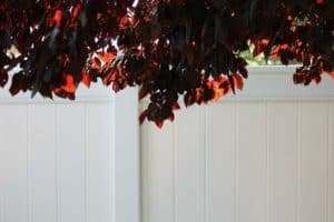 Reasons Why You Require A Vinyl Fence